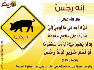 الآداب الإسلامية للوقاية من أنفلونزا الخنازير