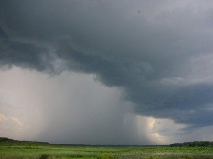 الخوف والمطر