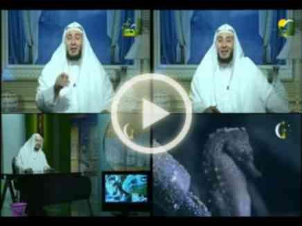 رحمة الام بأبنائها الشيخ أمين الانصاري