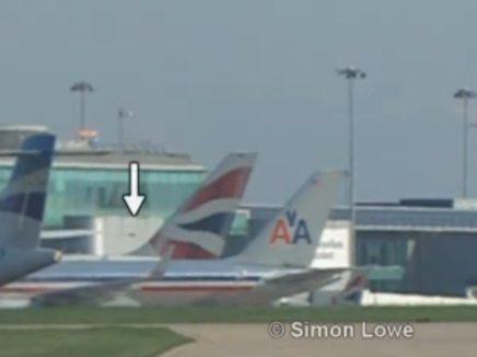 طائر صغير يقوم بتعطيل طائرة ركاب ويجربها على الهبوط الاضطراري